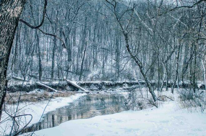 Snow Day-1-12