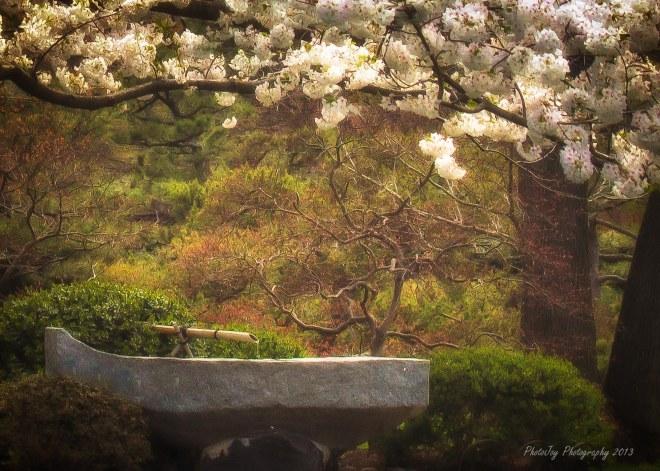 Botanical Gardens-1-70