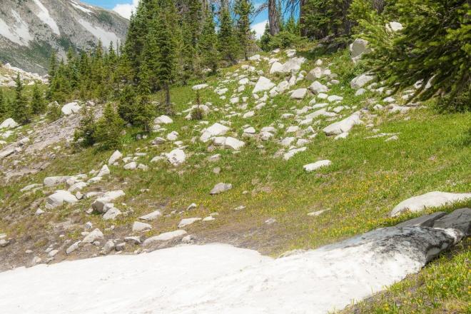 Snowy Range-1-45